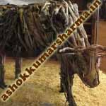 branched-out-cow2-150x150